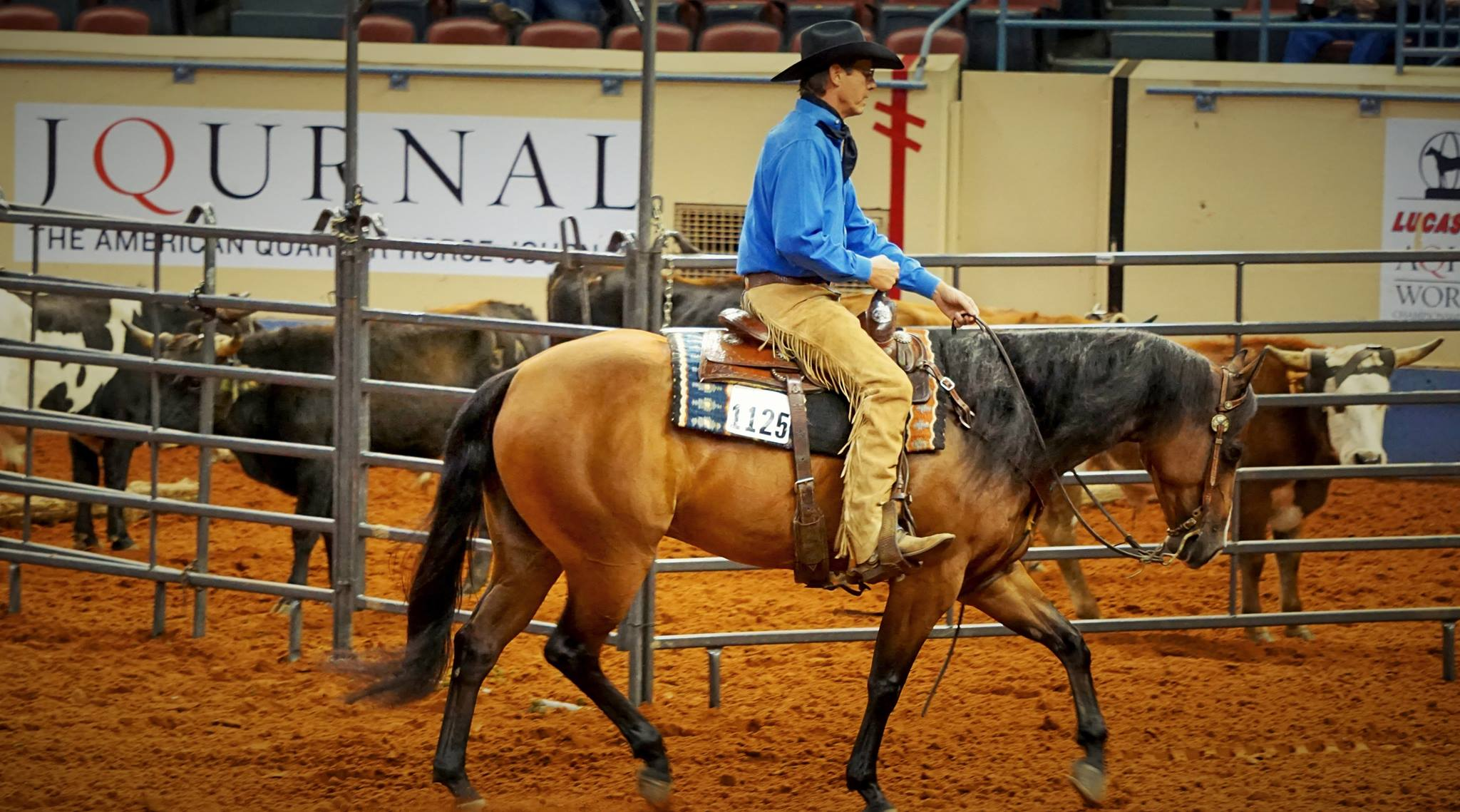 Craig Johnson Ranch Riding & Reining Clinic Image
